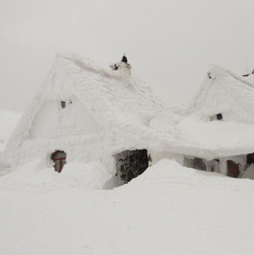 mysnowmaps - Bomba di neve in arrivo a Nord-Ovest e neve fino a Nord-Est